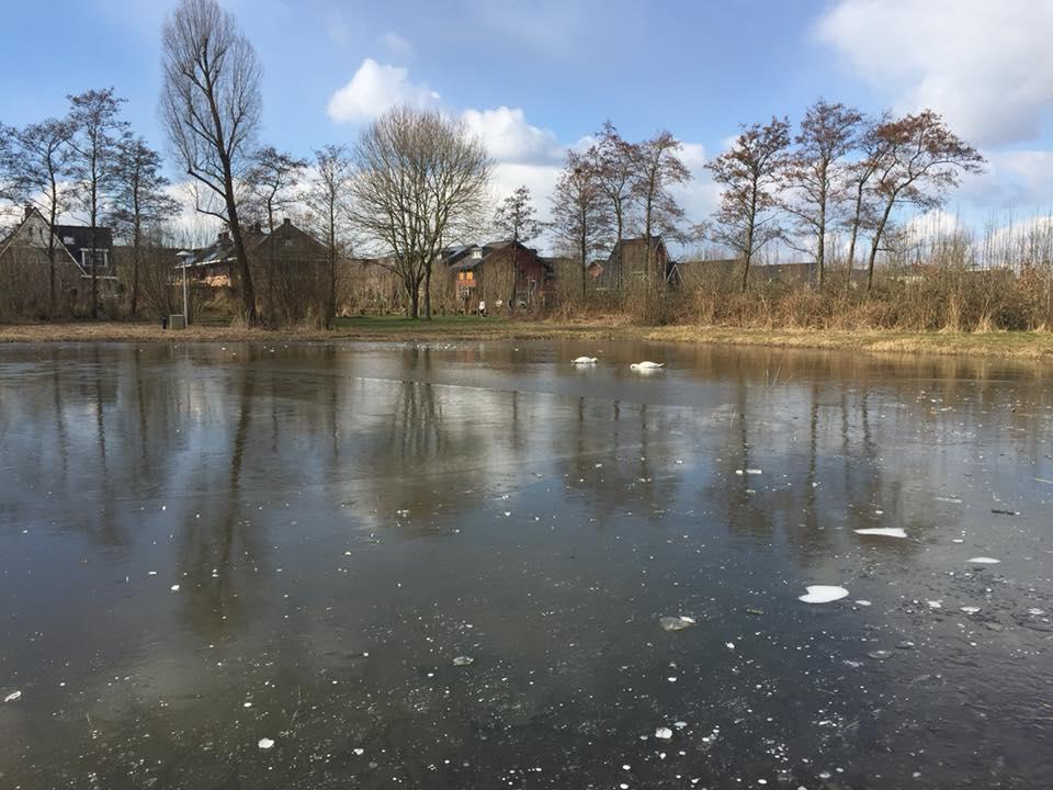 De 'ijsbaan' op maandag 26 februari 2018